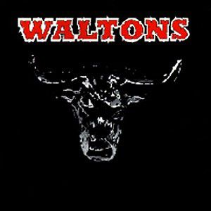 Essential Country Bullshit, The Waltons
