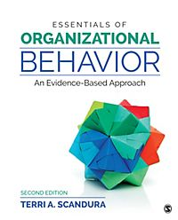 history of organizational behavior pdf