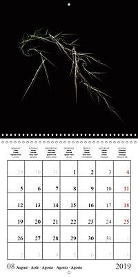Esthetic Chaos Fantasies (Wall Calendar 2019 300 × 300 mm Square) - Produktdetailbild 8
