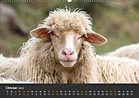 Etrurien: Land der Etrusker - Toskana und Latium für Entdecker (Wandkalender 2019 DIN A2 quer) - Produktdetailbild 10
