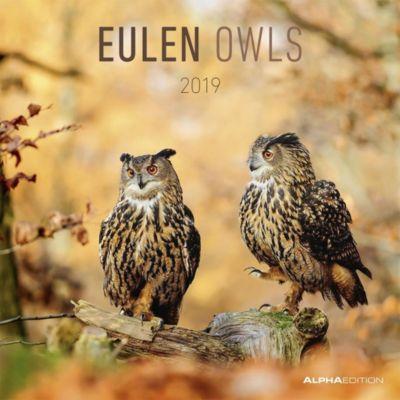 Eulen / Owls 2019, ALPHA EDITION