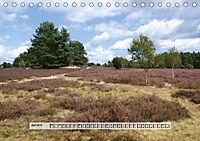 Europäische Heidelandschaften (Tischkalender 2019 DIN A5 quer) - Produktdetailbild 4