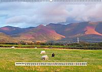 Europäische Heidelandschaften (Wandkalender 2019 DIN A2 quer) - Produktdetailbild 12