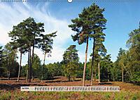 Europäische Heidelandschaften (Wandkalender 2019 DIN A2 quer) - Produktdetailbild 7