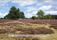 Europäische Heidelandschaften (Wandkalender 2019 DIN A3 quer) - Produktdetailbild 4