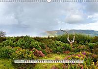 Europäische Heidelandschaften (Wandkalender 2019 DIN A3 quer) - Produktdetailbild 3