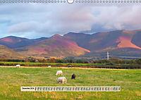 Europäische Heidelandschaften (Wandkalender 2019 DIN A3 quer) - Produktdetailbild 12