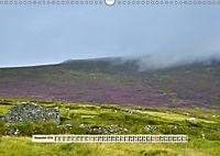 Europäische Heidelandschaften (Wandkalender 2019 DIN A3 quer) - Produktdetailbild 11