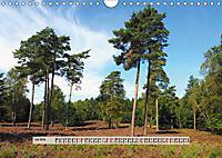 Europäische Heidelandschaften (Wandkalender 2019 DIN A4 quer) - Produktdetailbild 7