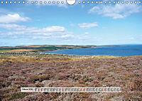 Europäische Heidelandschaften (Wandkalender 2019 DIN A4 quer) - Produktdetailbild 2