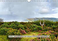 Europäische Heidelandschaften (Wandkalender 2019 DIN A4 quer) - Produktdetailbild 3