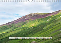 Europäische Heidelandschaften (Wandkalender 2019 DIN A4 quer) - Produktdetailbild 5