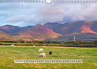 Europäische Heidelandschaften (Wandkalender 2019 DIN A4 quer) - Produktdetailbild 12