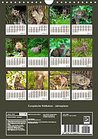 Europäische Wildkatzen - Jahresplaner (Wandkalender 2019 DIN A4 hoch) - Produktdetailbild 13