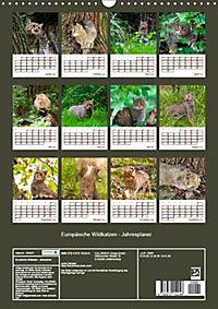 Europäische Wildkatzen - Jahresplaner (Wandkalender 2019 DIN A3 hoch) - Produktdetailbild 13
