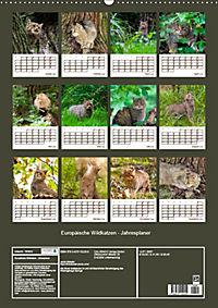 Europäische Wildkatzen - Jahresplaner (Wandkalender 2019 DIN A2 hoch) - Produktdetailbild 13