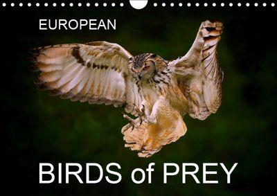 EUROPEAN BIRDS of PREY (Wall Calendar 2019 DIN A4 Landscape), Lister Cumming