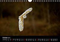 EUROPEAN BIRDS of PREY (Wall Calendar 2019 DIN A4 Landscape) - Produktdetailbild 10