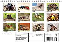 European Insects (Wall Calendar 2019 DIN A4 Landscape) - Produktdetailbild 13