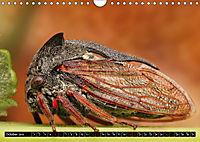 European Insects (Wall Calendar 2019 DIN A4 Landscape) - Produktdetailbild 10