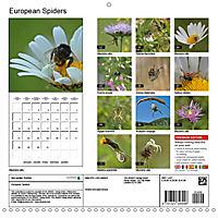 European Spiders (Wall Calendar 2019 300 × 300 mm Square) - Produktdetailbild 13