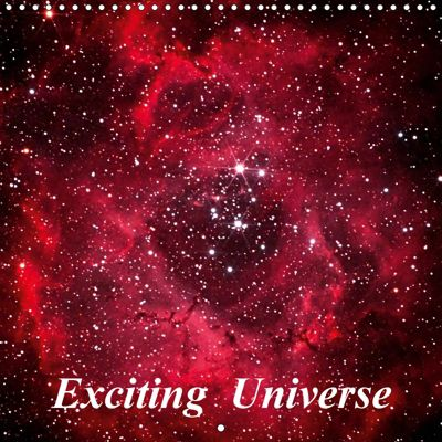 Exciting Universe (Wall Calendar 2019 300 × 300 mm Square), Monarch