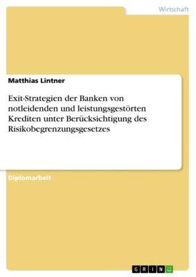 Exit-Strategien der Banken von notleidenden und leistungsgestörten Krediten unter Berücksichtigung des Risikobegrenzungsgesetzes, Matthias Lintner