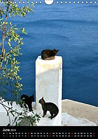 Exploring Santorini (Wall Calendar 2019 DIN A4 Portrait) - Produktdetailbild 6