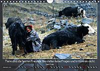 Facettenreiches Tibet (Wandkalender 2019 DIN A4 quer) - Produktdetailbild 1