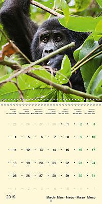 Facing Mountain Gorillas in Uganda (Wall Calendar 2019 300 × 300 mm Square) - Produktdetailbild 3