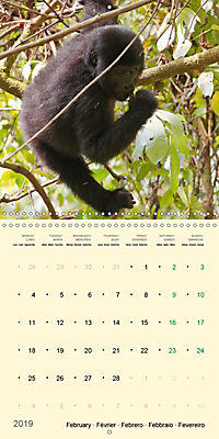 Facing Mountain Gorillas in Uganda (Wall Calendar 2019 300 × 300 mm Square) - Produktdetailbild 2