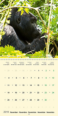 Facing Mountain Gorillas in Uganda (Wall Calendar 2019 300 × 300 mm Square) - Produktdetailbild 11