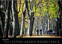 Fahrrad-Hauptstadt MÜNSTER im goldenen Grün (Wandkalender 2019 DIN A2 quer) - Produktdetailbild 5