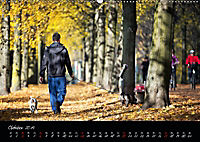 Fahrrad-Hauptstadt MÜNSTER im goldenen Grün (Wandkalender 2019 DIN A2 quer) - Produktdetailbild 10