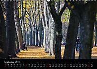 Fahrrad-Hauptstadt MÜNSTER im goldenen Grün (Wandkalender 2019 DIN A2 quer) - Produktdetailbild 9