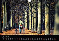 Fahrrad-Hauptstadt MÜNSTER im goldenen Grün (Wandkalender 2019 DIN A4 quer) - Produktdetailbild 6
