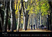 Fahrrad-Hauptstadt MÜNSTER im goldenen Grün (Wandkalender 2019 DIN A4 quer) - Produktdetailbild 5