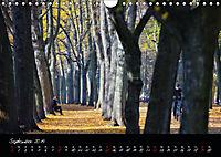Fahrrad-Hauptstadt MÜNSTER im goldenen Grün (Wandkalender 2019 DIN A4 quer) - Produktdetailbild 9