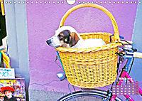 Fahrrad-Idyllen (Wandkalender 2019 DIN A4 quer) - Produktdetailbild 3