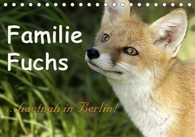 Familie Fuchs hautnah in Berlin (Tischkalender 2019 DIN A5 quer), Sabine Brinker