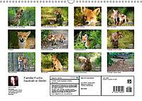 Familie Fuchs hautnah in Berlin (Wandkalender 2019 DIN A3 quer) - Produktdetailbild 13