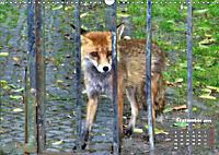 Familie Fuchs hautnah in Berlin (Wandkalender 2019 DIN A3 quer) - Produktdetailbild 9