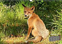 Familie Fuchs hautnah in Berlin (Wandkalender 2019 DIN A3 quer) - Produktdetailbild 10