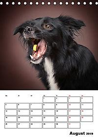 Fang das Leckerli (Tischkalender 2019 DIN A5 hoch) - Produktdetailbild 8