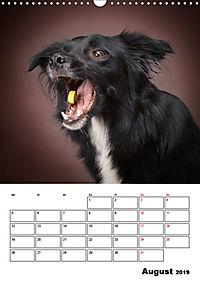 Fang das Leckerli (Wandkalender 2019 DIN A3 hoch) - Produktdetailbild 8