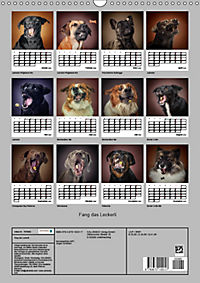 Fang das Leckerli (Wandkalender 2019 DIN A3 hoch) - Produktdetailbild 13