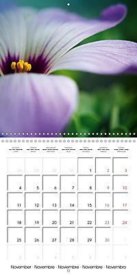 Fantastic Flora (Wall Calendar 2019 300 × 300 mm Square) - Produktdetailbild 11
