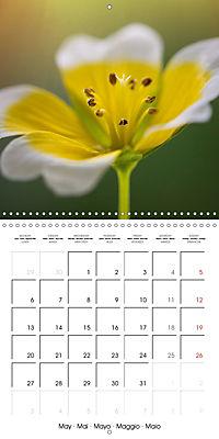 Fantastic Flora (Wall Calendar 2019 300 × 300 mm Square) - Produktdetailbild 5