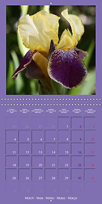 Fantastic Iris (Wall Calendar 2019 300 × 300 mm Square) - Produktdetailbild 3