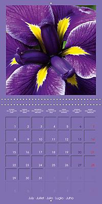 Fantastic Iris (Wall Calendar 2019 300 × 300 mm Square) - Produktdetailbild 7